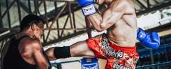 trening fighterski sztuk walki (1)